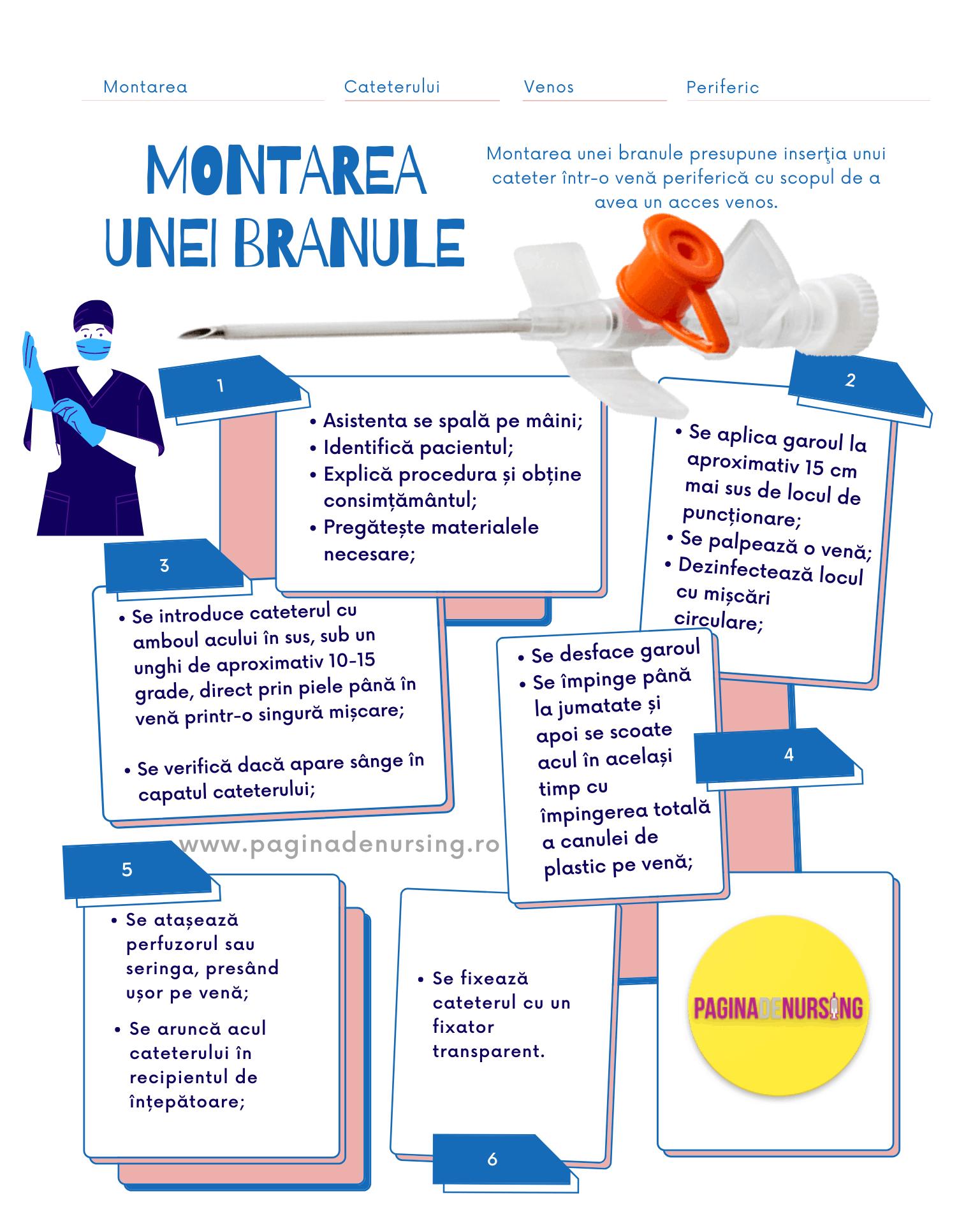 MONTAREA UNEI BRANULE PAGINA DE NURSING
