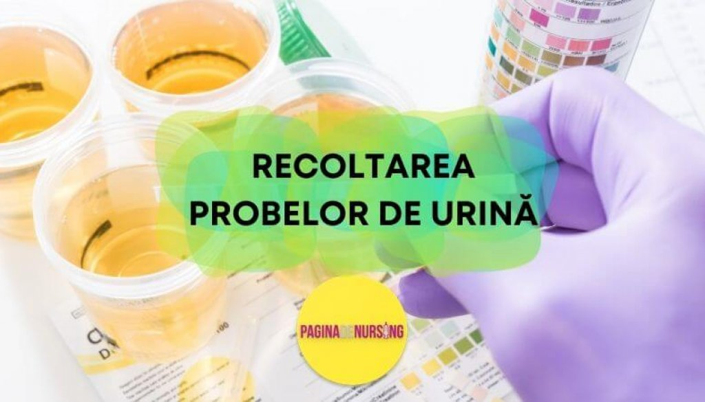 recoltarea probelor de urina pagina de nursing