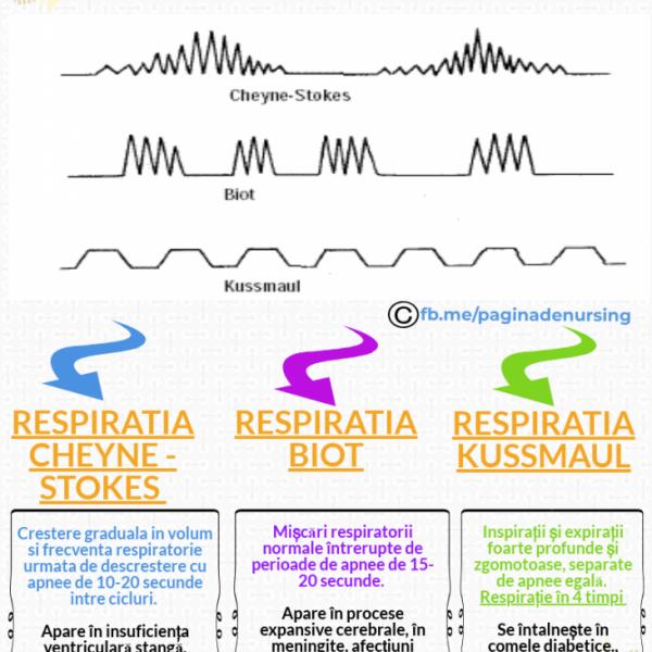 tipuri de respiratii cheyne stokes biot kussmaul pagina de nursing