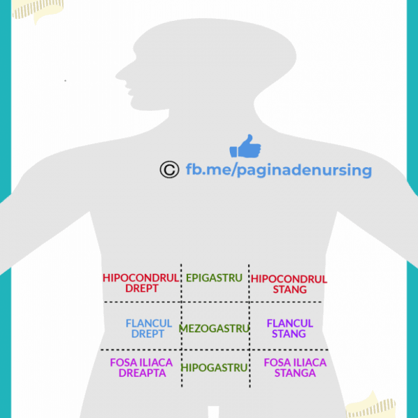 cadranele abdominale pagina de nursing
