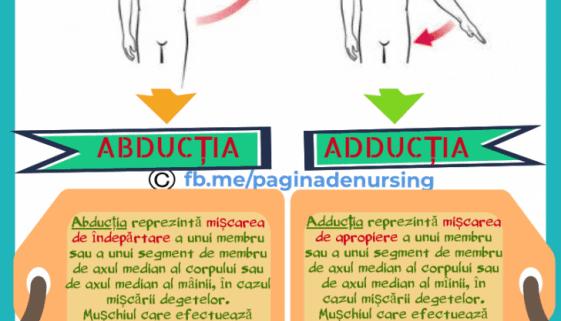 abductia adductia pagina de nursing