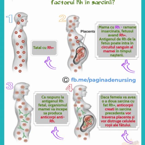 factorul RH sarcina pagina de nursing