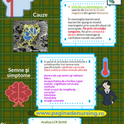 meningita meningococica pagina de nursing