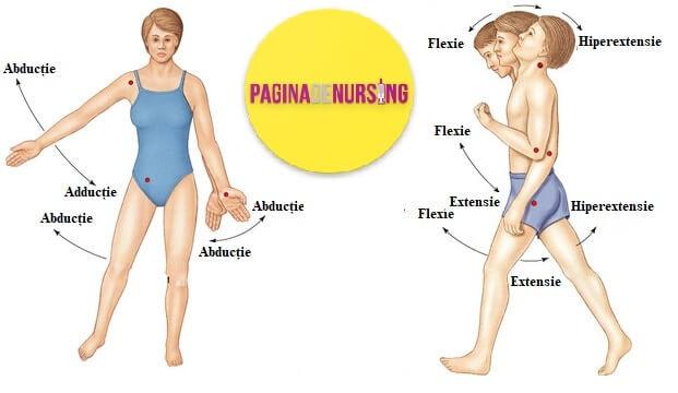 adductie abductie flexie extensie pagina de nursing