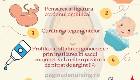 nou-nascutul - primele ingrijiri ale nou nascutului in maternitate pagina de nursing