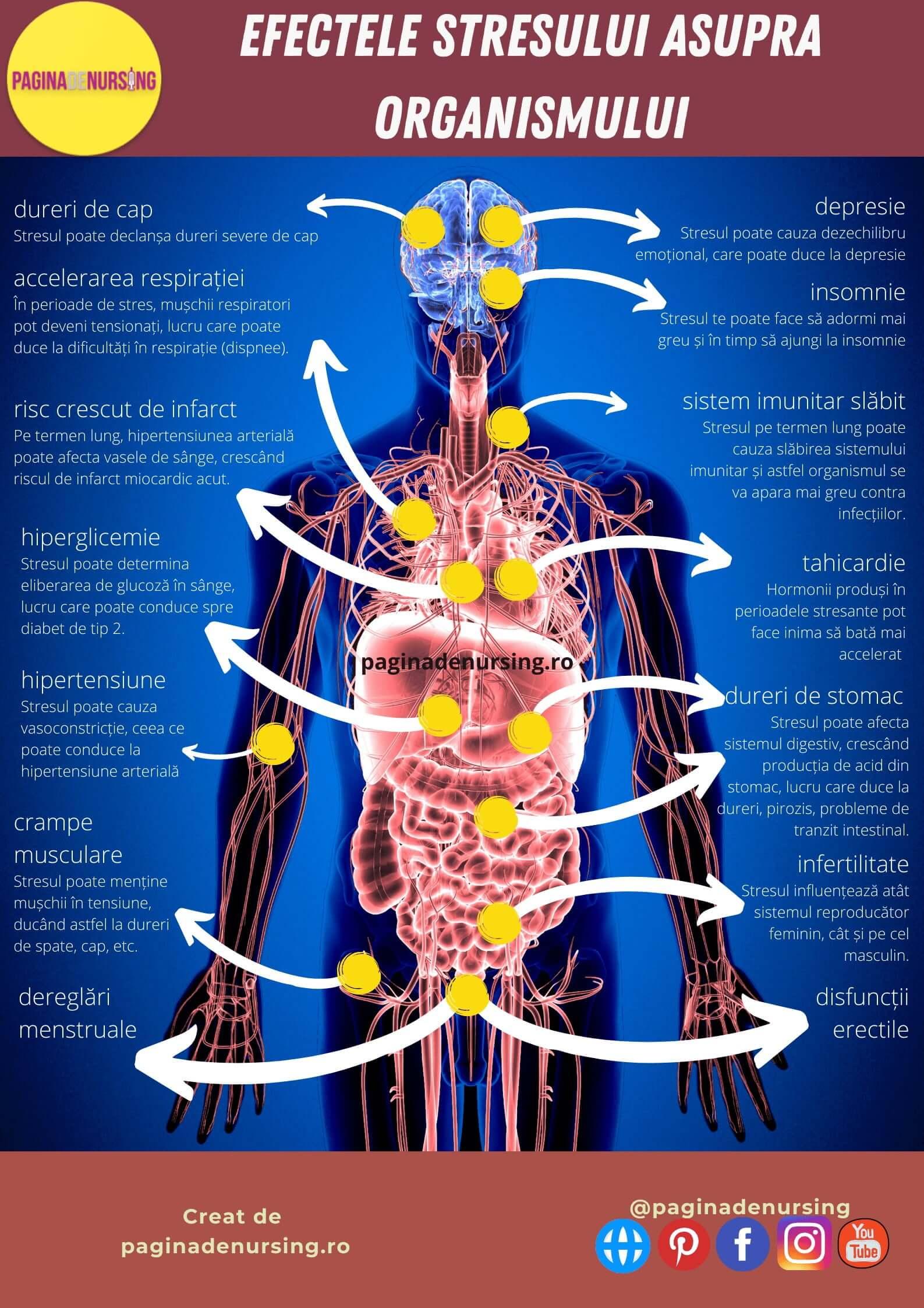 cum poate afecta stresul organismul paginadenursing