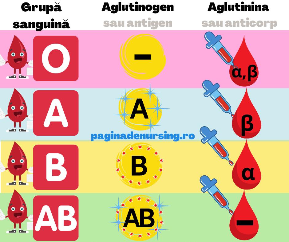 grupa sanguina compatibilitatea grupelor de sange O A B AB paginadenursing aglutinogen aglutinina
