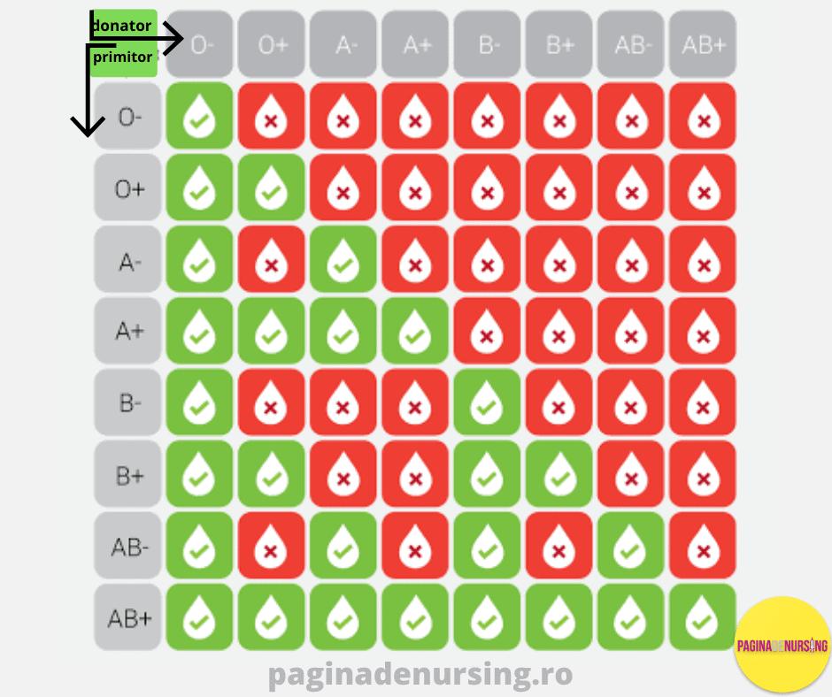 grupa sanguina compatibilitatea grupelor de sange O A B AB paginadenursing donator primitor rh pozitiv rh negativ