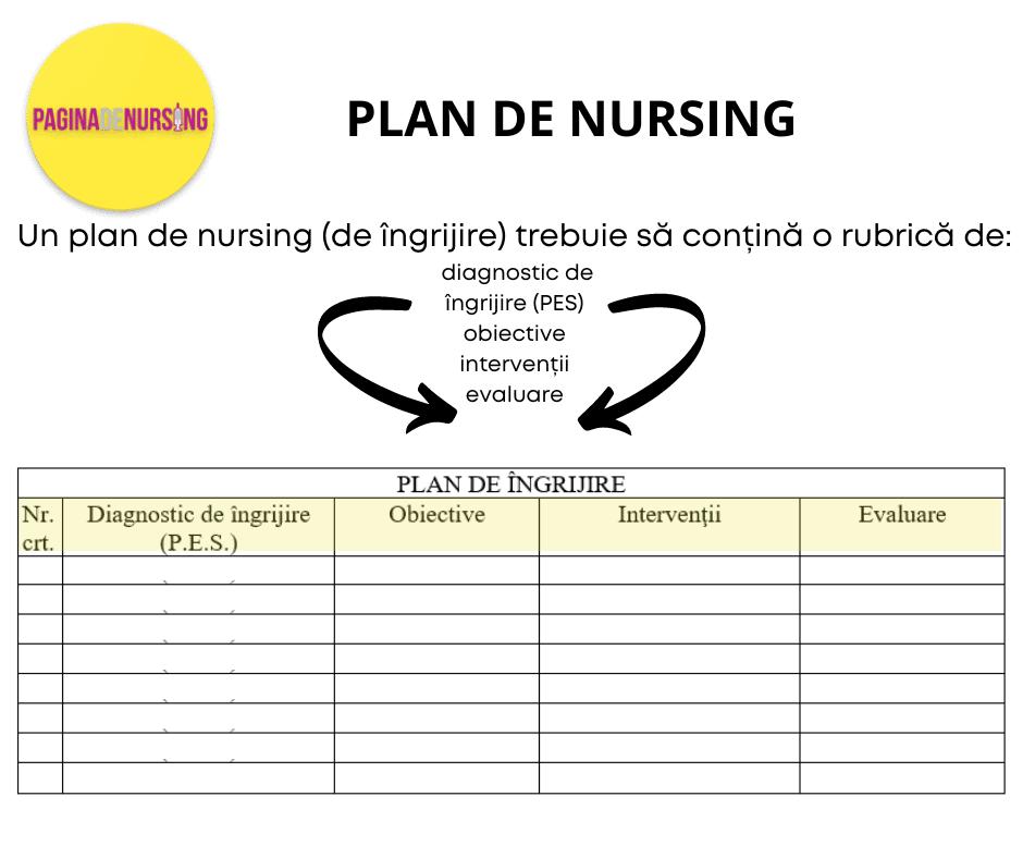 PLAN DE NURSING FORMAT