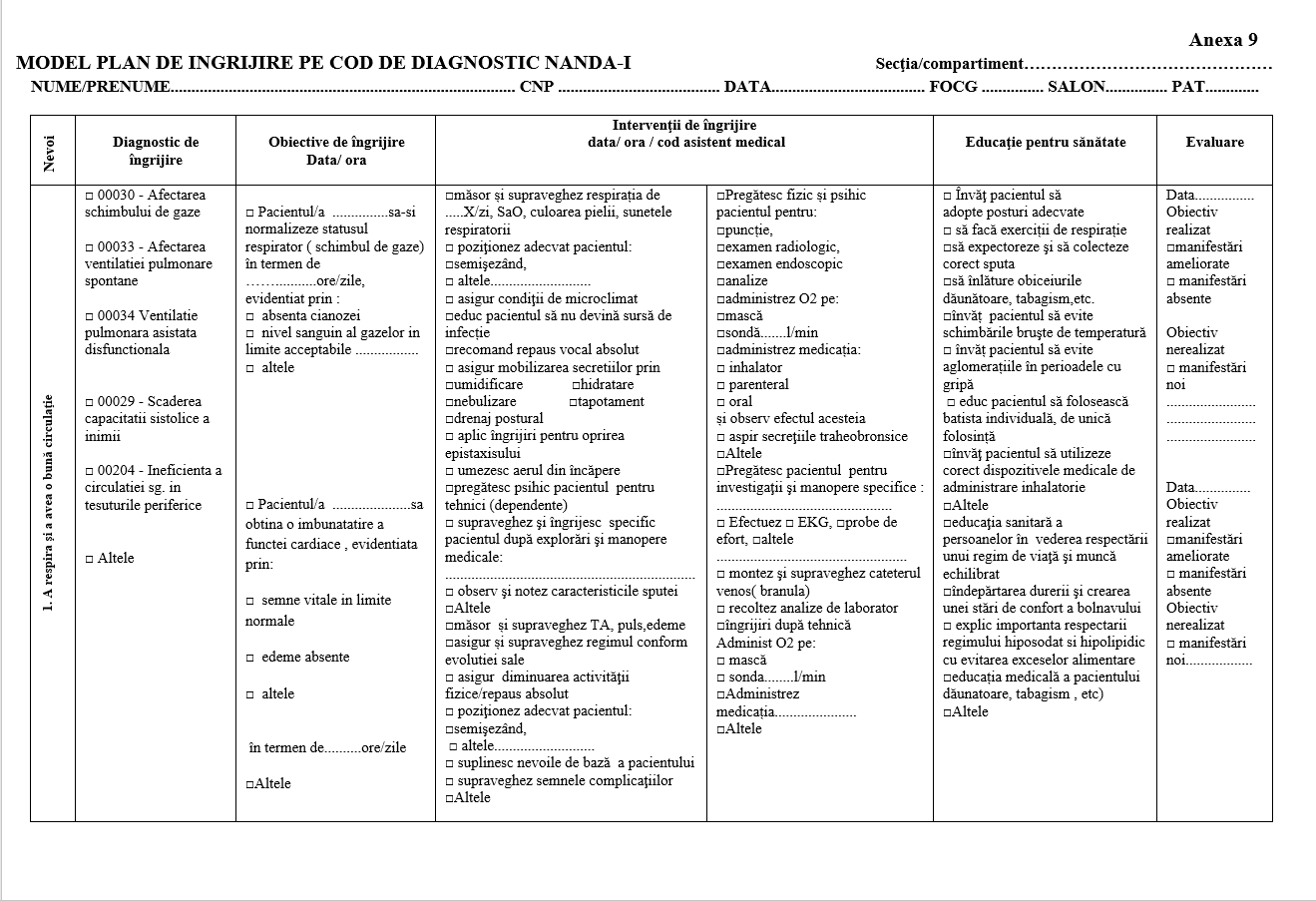 model plan de nursing plan de ingrijire