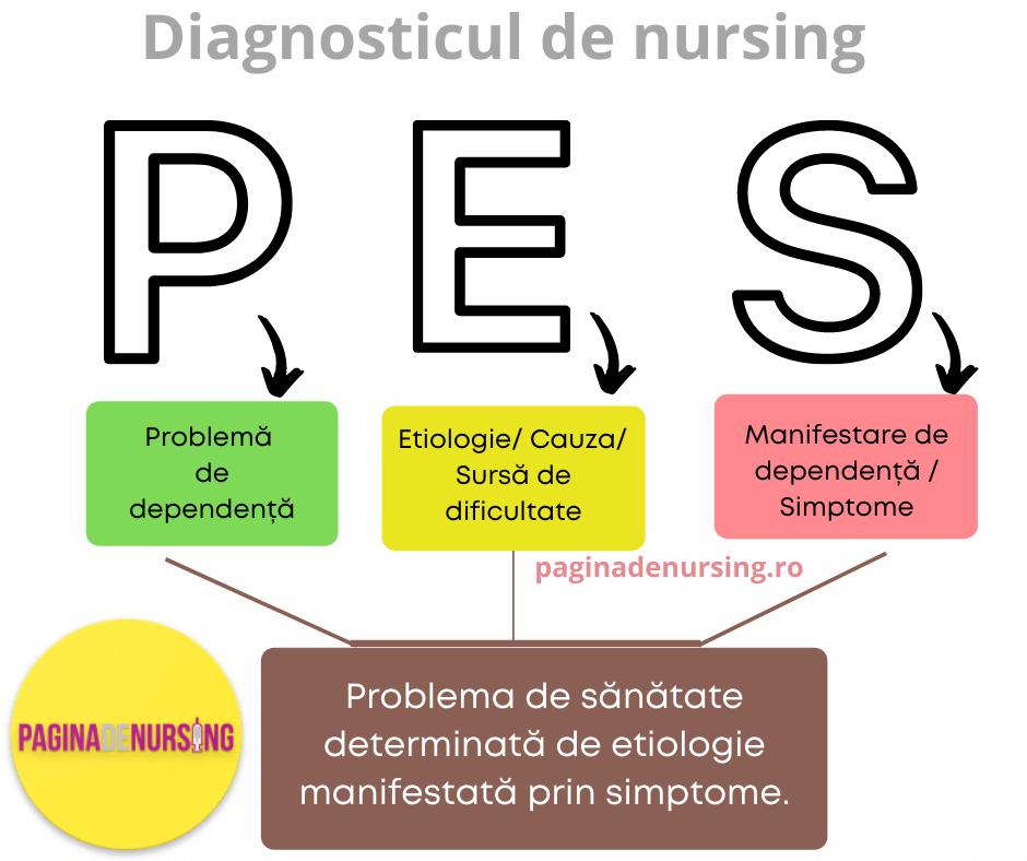 plan de nursing stabilire diagnostic de nursing PES paginadenursing