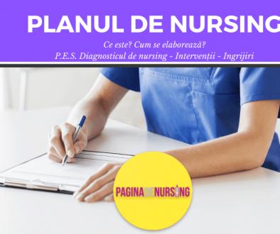 planul de nursing paginadenursing