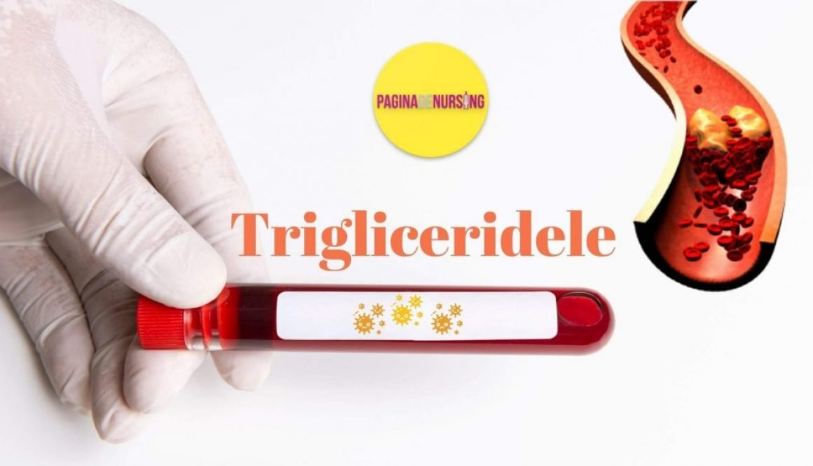 TRIGLICERIDDELE ANALIZA PAGINA DE NURSING