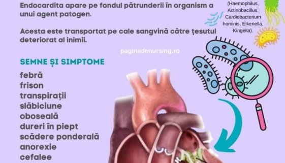 endocardita infectioasa pagina de nursing patologie amg